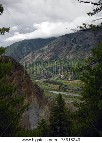 Himalayan Agricultural Town Seen From A Pine Forest