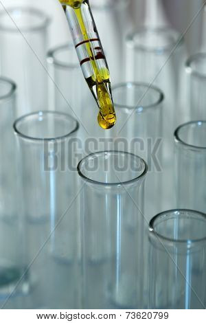 Test tubes on gray background