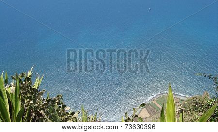 Ocean view from 800m height