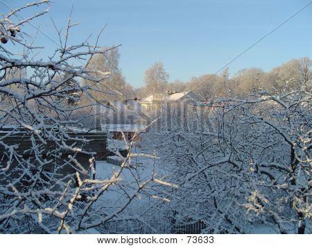 Winter In My Neighbourhood