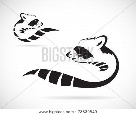 Vector Image Of A Raccoon