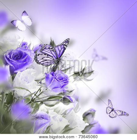 Bouquet of white and pink roses, butterfly.