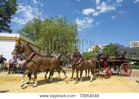 People Mounted On A Carriage Horse.