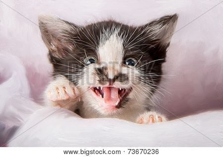 Kitten attack with open mouth