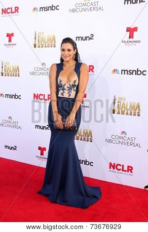 LOS ANGELES - OCT 10:  Angelique Cabral at the 2014 NCLR ALMA Awards at Civic Auditorium on October 10, 2014 in Pasadena, CA