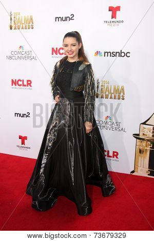 LOS ANGELES - OCT 10:  Fatima Ptacek at the 2014 NCLR ALMA Awards Arrivals at Civic Auditorium on October 10, 2014 in Pasadena, CA