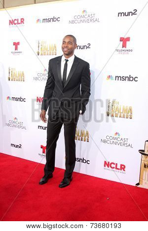 LOS ANGELES - OCT 10:  Jay Ellis at the 2014 NCLR ALMA Awards Arrivals at Civic Auditorium on October 10, 2014 in Pasadena, CA
