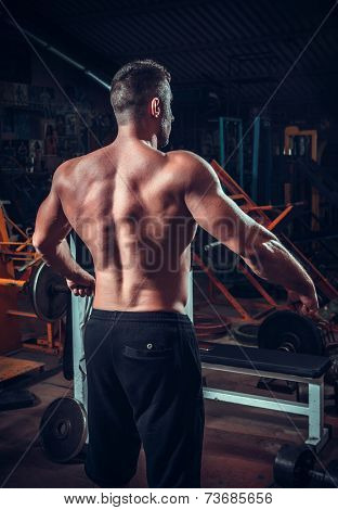 Muscled male model showing his back