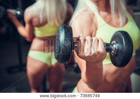 fitness woman doing exercises with dumbbell in the gym