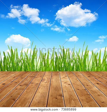 Dewy green grass with wooden planks