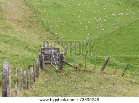 Fence In Field And View Of Mountain And Sheep Farm.