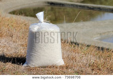 Bag of salt in the marshes
