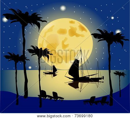 Exotic Tropical Landscape With Moon Night Sky, Palm Trees,