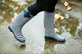 picture of woman boots  - Woman in Boots on rainy autumn day - JPG