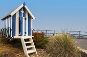 picture of beach hut  - Striped blue beach hut on Filey promenade with foliage and blue sky seaside towns UK - JPG