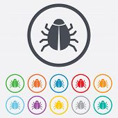 picture of disinfection  - Bug sign icon - JPG