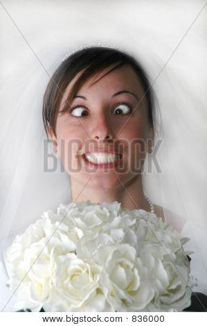 Bride Crazy
