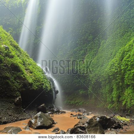 Madakaripura Waterfall - Deep Forest Waterfall In East Java, Indonesia