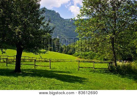 Landscape at Tara mountain and national park