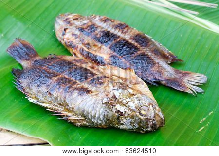 Grilled Fish On Banana Leaf