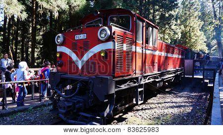 Tourists Take A Ride On Alishan Mountain Train