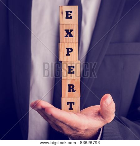 Professional Expertise Concept