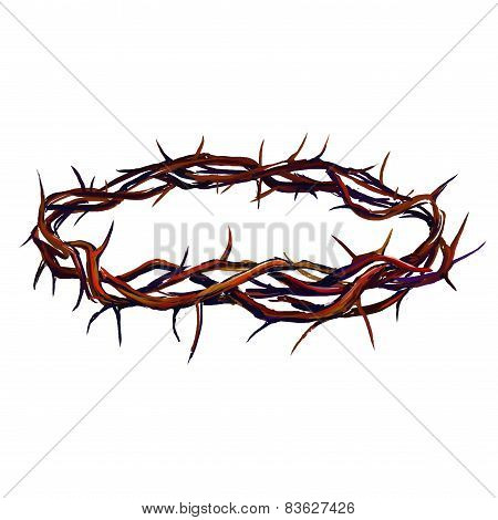 crown of thorns vector illustration  hand drawn  painted