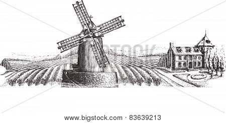 windmill vector logo design template. harvest or village icon.