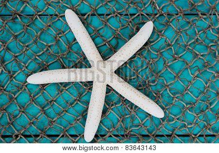 White starfish on fish net texture background