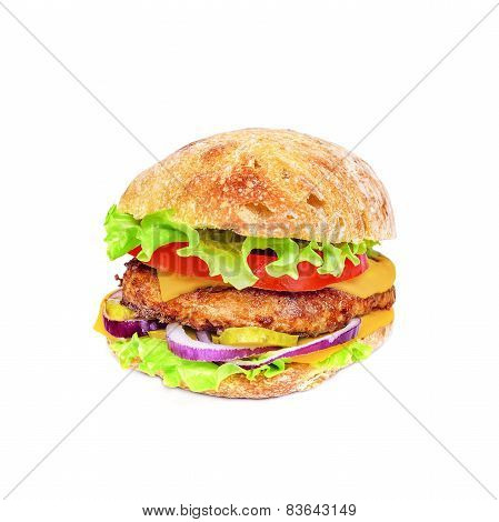 Tasty and appetizing hamburger