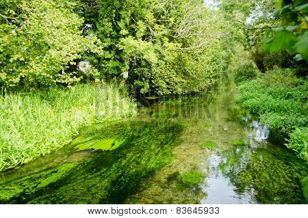 River Alre, Hampshire