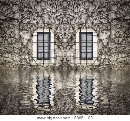 windows on a wall filled with creepers reflected on water