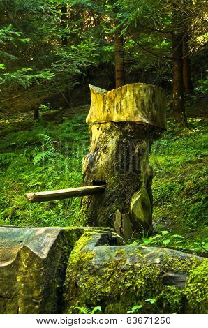 Funny wooden water fountain at Tara mountain and national park