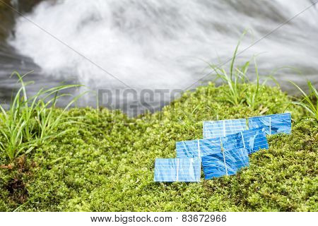 Solar cells on a moss