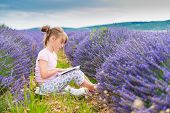 foto of lavender field  - Adorable little girl reading a book in a lavender field on a nice sunny evening - JPG