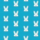 foto of bunny rabbit  - Vector  - JPG
