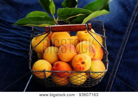 basket of fresh apricots - fruits and vegetables