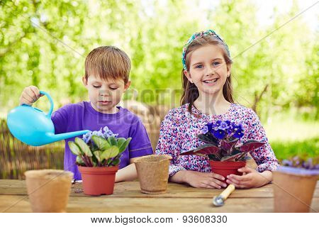 Two youngsters taking care of violets in the garden