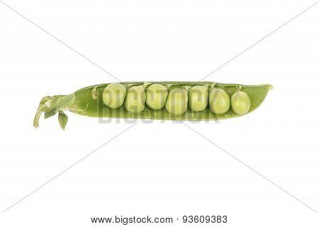 Green Peas In A Pod