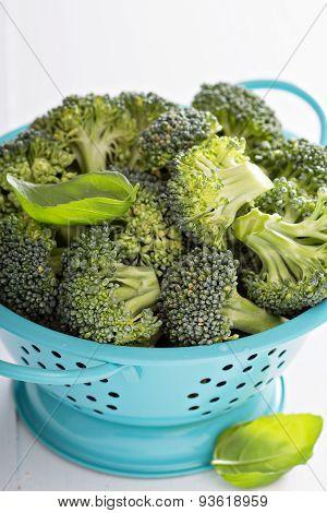 Fresh broccoli florets in blue colander