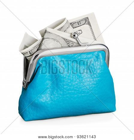 Purse With Hundred Dollar Banknote Isolated On White