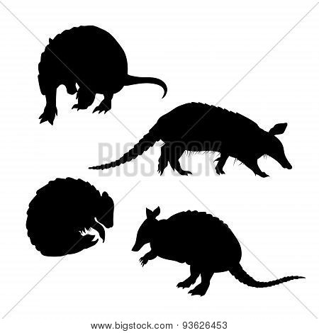 Armadillo set vector