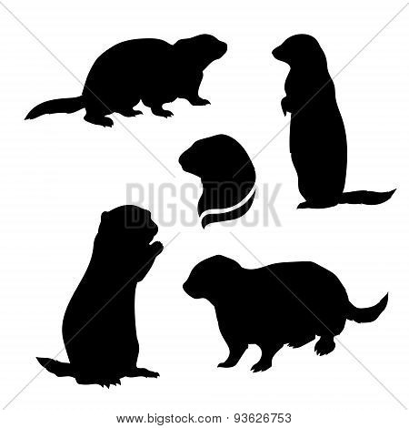 Gopher set vector
