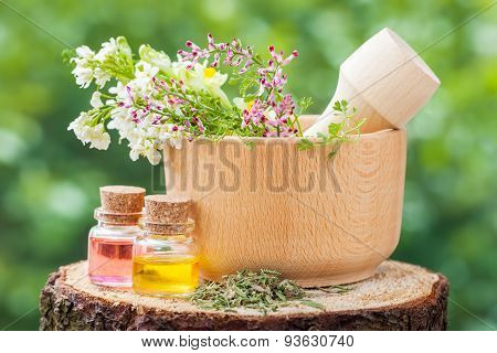 Rustic Mortar With Healing Herbs And Bottles With Essential Oi