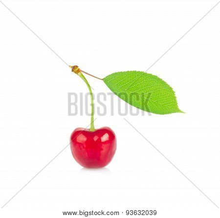 Ripe Juicy Cherry With Green Leaf.