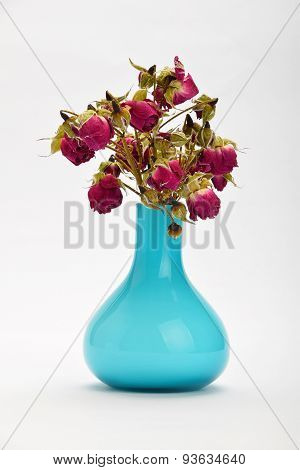 Dried-up red roses in a blue vase on white background with shade