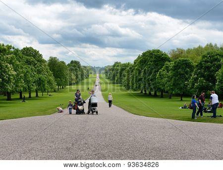 WINDSOR, ENGLAND - JUNE 11, 2015: People walking along the Long Walk leading through the park to Windsor Castle, Berkshire, UK in a scenic landscape view on June 11, 2015
