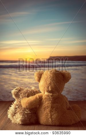 Teddies watching the setting sun at the coast