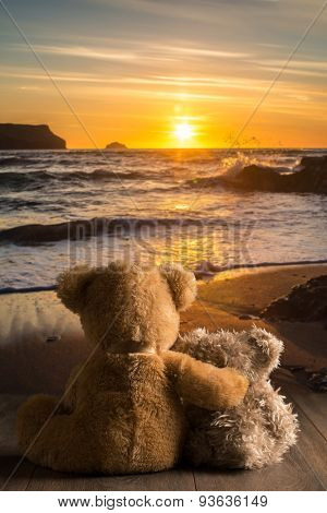 Teddies watching the setting sun