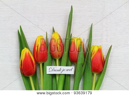 Dank je wel (which means thank you in Dutch) with red and yellow tulips